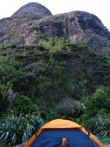 Camping in Pararaha Valley, Waitakere Ranges - an amazing New Zealand experience
